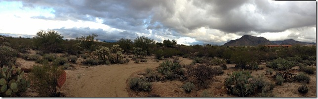 desert trail panorama 1-28-2013 8-09-17 AM 7616x2332