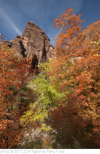 'Autumn Colors' photo (c) 2011, Zion National Park - license: http://creativecommons.org/licenses/by/2.0/