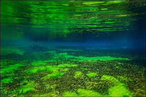 البحيرة الزرقاء في نيوزلندا