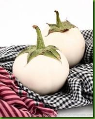 Eggplant White Giant