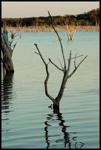 lake 019-1