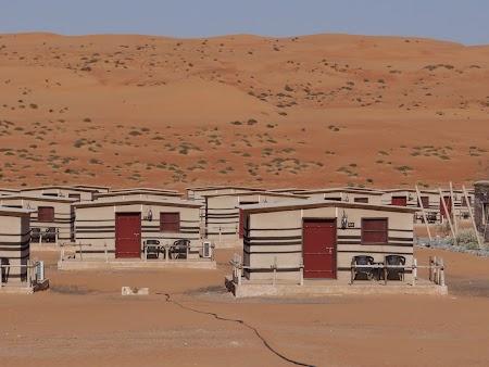 04. Arabian Oryx Camp - Wahiba Sands.JPG