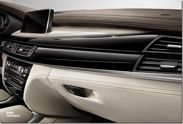 BMW-X6-M-Individual-3