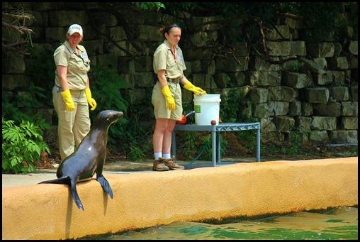 Zoo4 392
