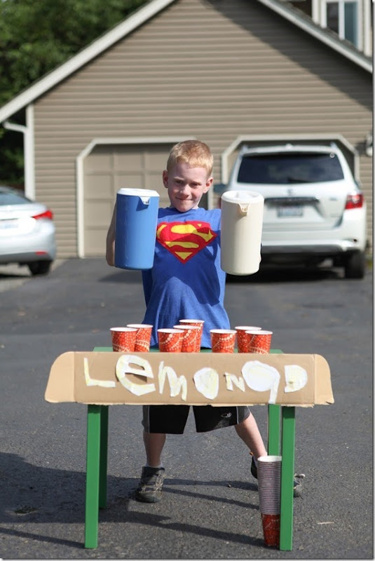 Lemonade stand (12)-small