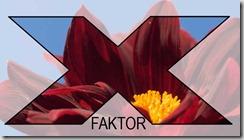 roed-orange-x faktor