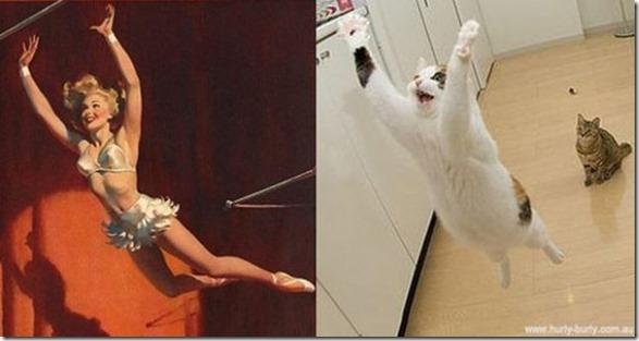 cats-pinup-models-13