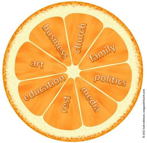 orange-segmented-life-01