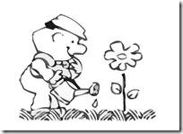 primavera (3)
