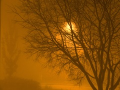 SUNSET IN THE FOG