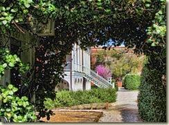x 140320 Robert Mills House Gardens (45)