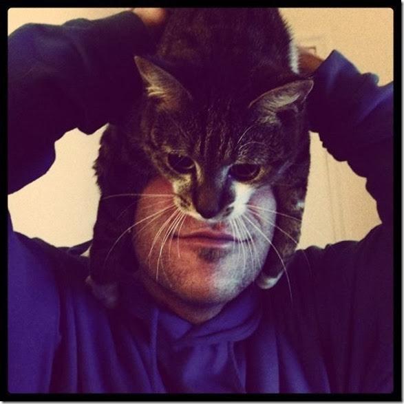 catman-meme-face-16