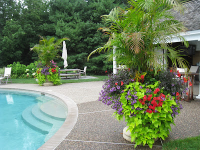 POOLSIDE PLANTERS