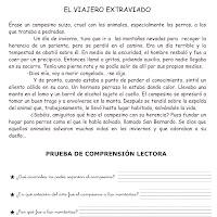 EL VIAJERO EXTRAVIADO-1