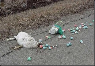 easter_roadkill