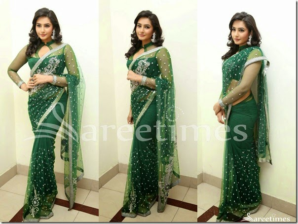 Ragini_Dwivedi_Green_Net_Saree