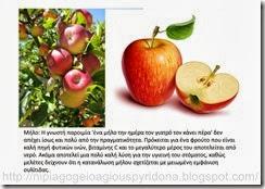 τα φρούτα του φθινοπώρου (9)