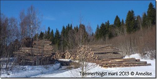 2013mar21-tømmer_01