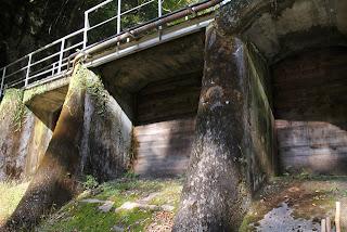 下流より右岸側の堤体を望む