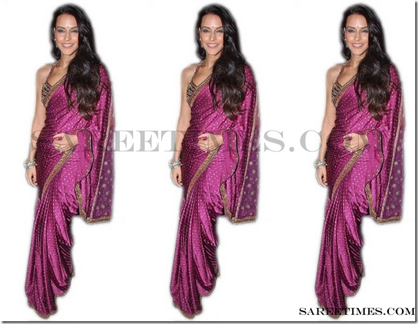 Neha_Dhupia_Purple_Designer_Saree
