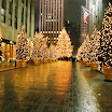 Christmas Trees at Rockefeller Center