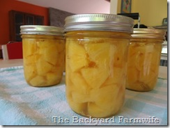 Canning Fresh Pineapple - The Backyard Farmwife