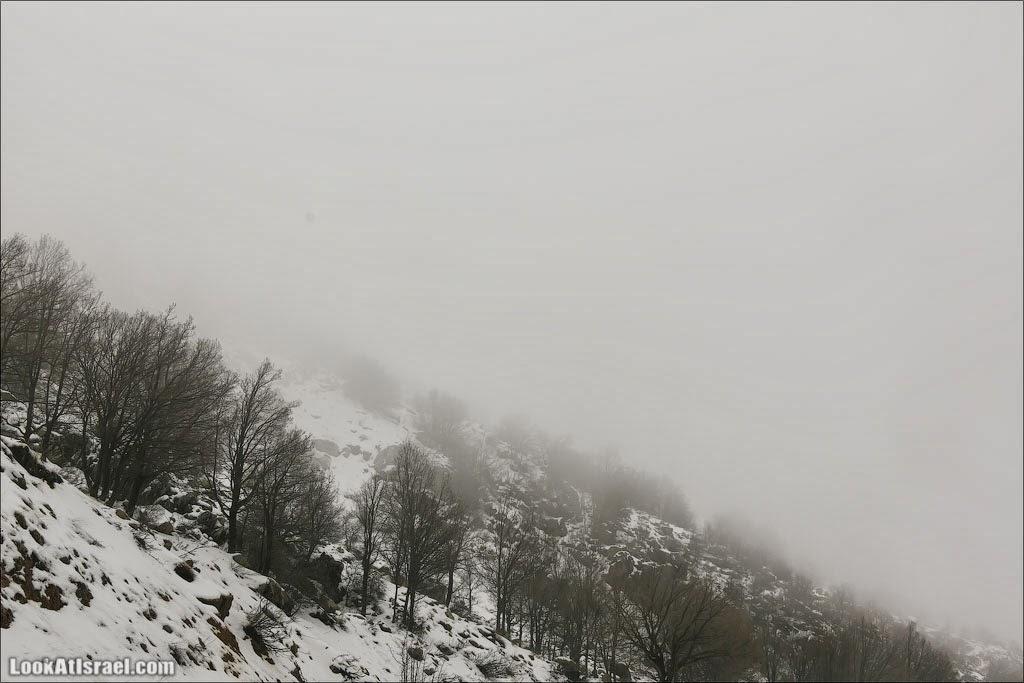 LookAtIsrael.com: Охлаждающий Хермон (israel путешествия природа дождь и снег горы и пещеры голанские высоты )