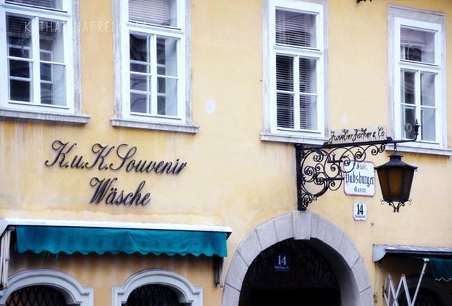 Vienna1013_4
