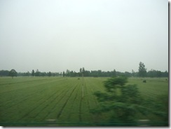 車窓からの風景①
