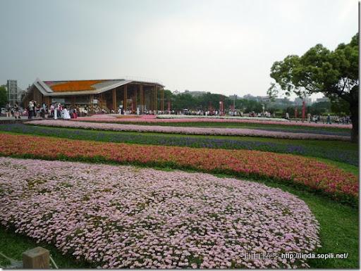 2010台北花博-林下花圃花海區