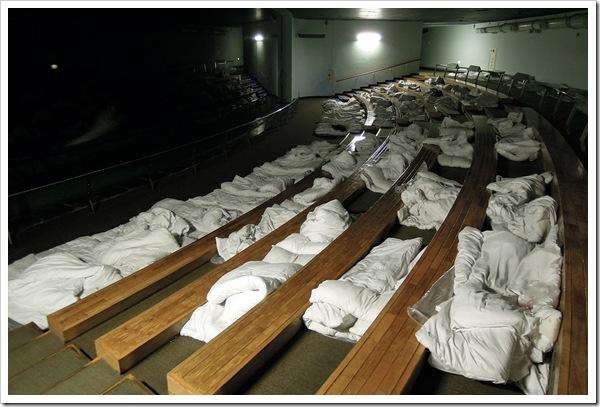 夜宿海生館