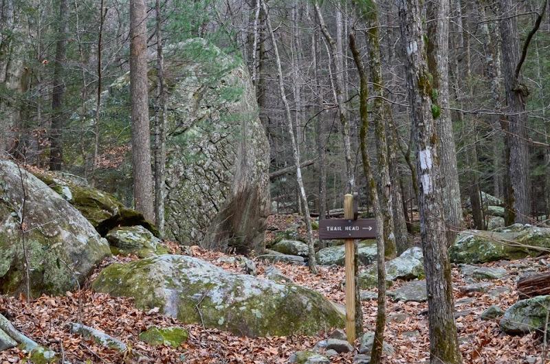 Laurel Snow area visit-17892