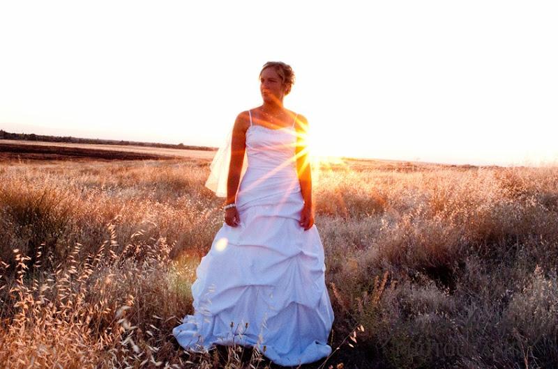Lauren Trash the dress-9