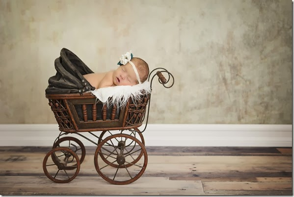 Newborn Photo - Vintage Baby Carriage -  Lindsey Dutra Photography