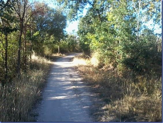 caminho de santiago cel 311