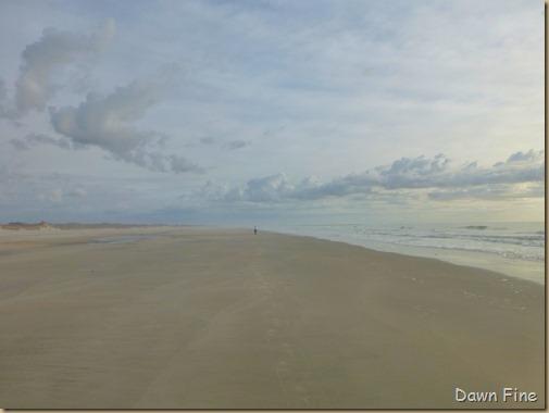 North beach  _008