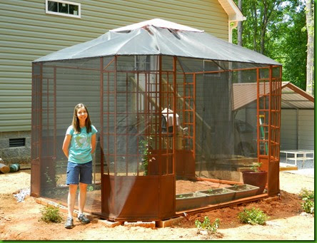 How To Build Your Own Butterfly Conservatory