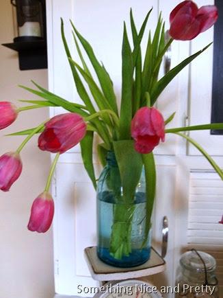 new tulips 010