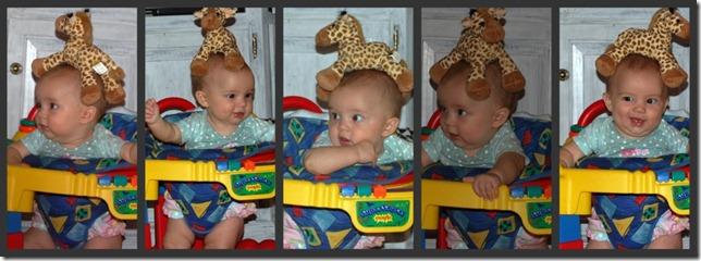 giraffeheadcollage