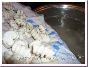 Gnocchi di ricotta in salsa di pomodoro e origano (11)