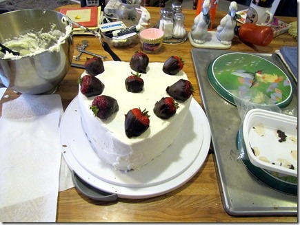 Birthdaycake07-17-11b