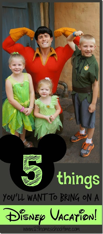5 Things you'll want to bring on a Disney Vacation - great Disney tips for family vacation. You wont' want to forget these!!!