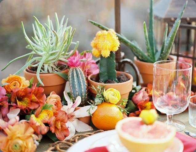 cactus cinco-de-mayo-wedding-ideas-49  Chelsea Scanlan photo