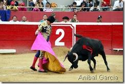 (Anibal Garcia)