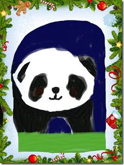 DrawingPadAppLR_Pandas