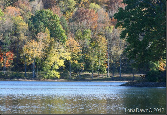 Lake_Alma5_2012