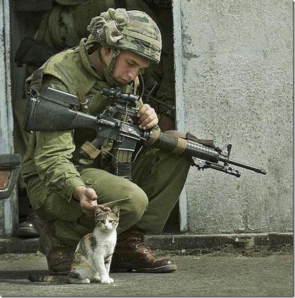 Soldados e animais de estimação (13)