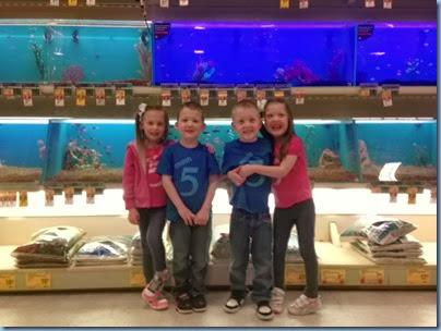 quads fish1