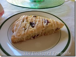 GF cranberry orange scone - The Backyard Farmwife