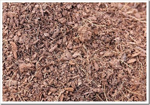 111002_soil_coir_02